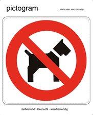 Pictogram sticker Verboden voor honden (10x10cm)