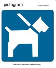 Pictogram sticker Honden aan de lijn (10x10cm)
